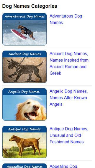 Dog Names Expert old people names