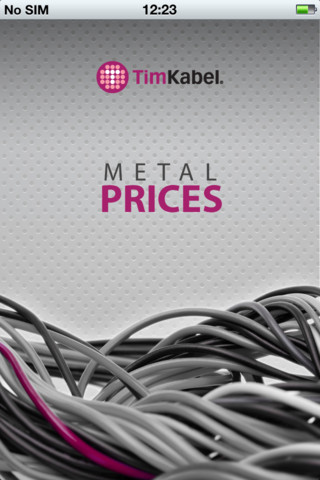 Metal Prices hyundai vehicles and prices