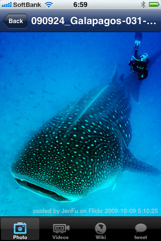 Shark Diving diving equipment