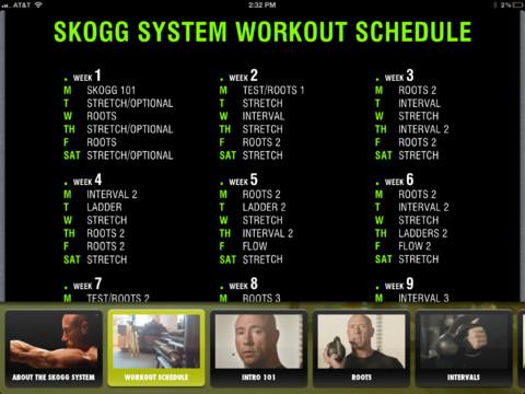 Skogg system workout schedule