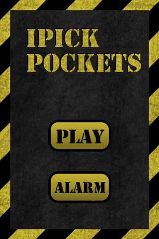 iPick Pockets skirts with pockets