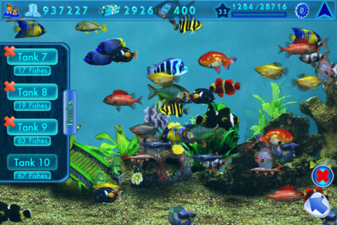 Fish tank games sizes insaniquarium game watch out for for Fish tank game