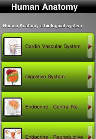 Human Anatomy!