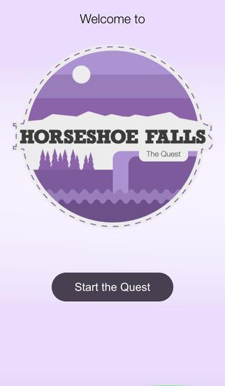 Horseshoe Falls horseshoe