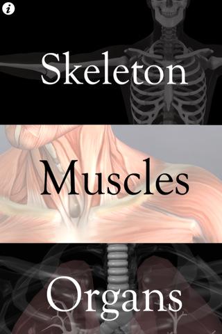 Anatomy Quiz Pro anatomy quiz