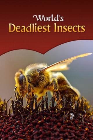 Deadliest Insects insects entomologist study