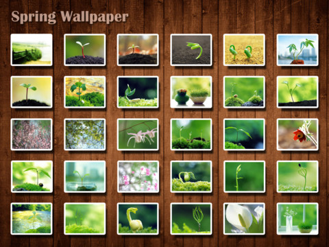 Spring Wallpaper HD 1.7