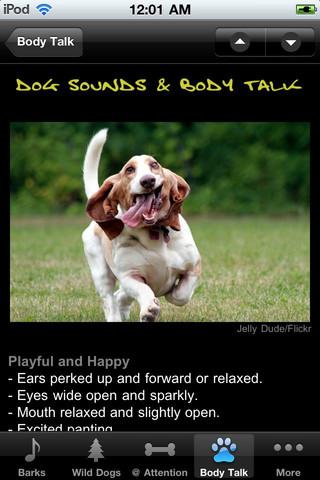 Dog Sounds & Body Talk