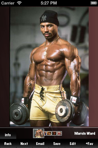 Bodybuilding Expert bodybuilding forums