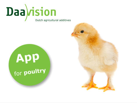 Daavision Poultry seafood and poultry