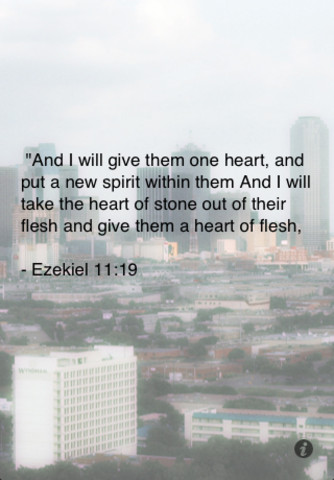 Daily Bible Verse Nasb 1 1 App For Ipad Iphone