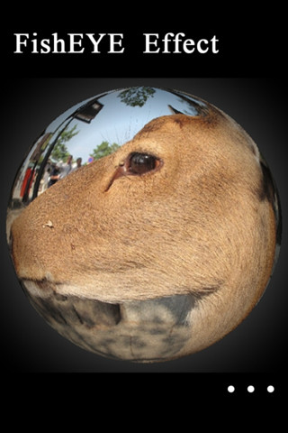 Fish  Lens on Fisheye Camera Lens Pro 1 0 App For Ipad  Iphone   Photo   Video   App