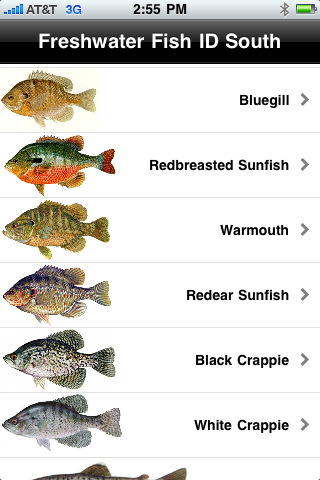 Freshwater fish identification for Freshwater fish guide