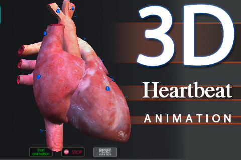 3d heart animation: