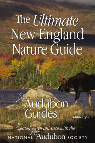 Audubon Nature New England – The Ultimate New England Nature Guide manchester england