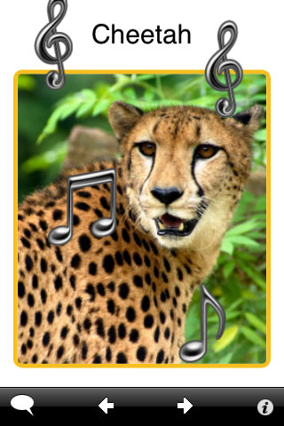 ABA Flash Cards - Zoo Animals