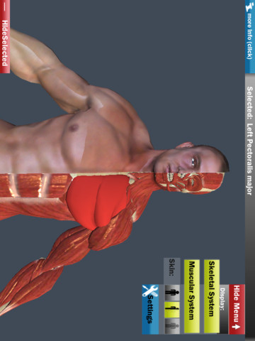 Easy Anatomy 3D (a visual guide to learning human anatomy) anatomy of hand