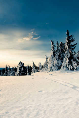 snow wallpapers. Snow Wallpapers amp; Backgrounds