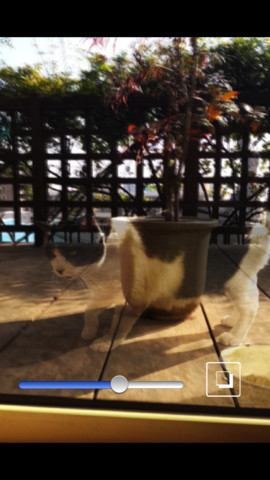 Shadow Clone Camera