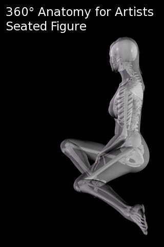 360 Anatomy for Artists - Seated Figure anatomy