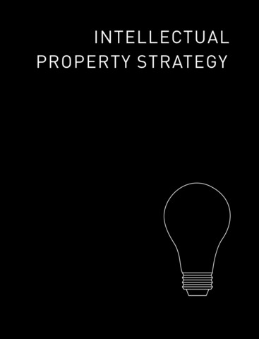 Intellectual Property Strategy protecting intellectual property