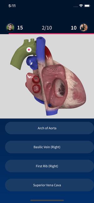 Quiz Anatomy anatomy quiz