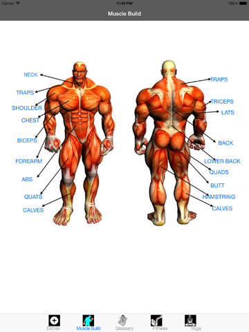 Extreme Bodybuilding bodybuilding forums