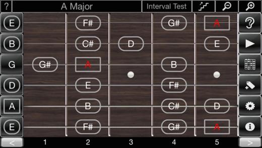 Ear Logic - Ear Trainer for Guitar anatomy of ear