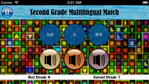 Second Grade Multilingual Match