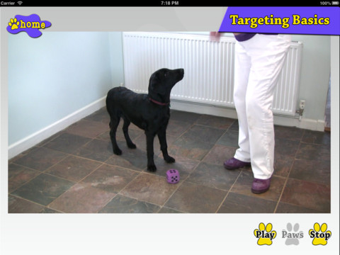 Crazy Daisy Dog Training Basics 1.0 App for iPad, iPhone - Education ...