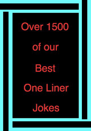 Best One Liner Jokes Funny Liners