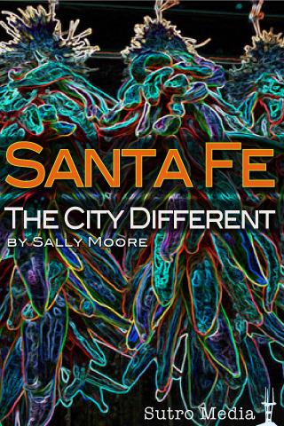 Santa Fe ✭ The City Different lease hyundai santa fe