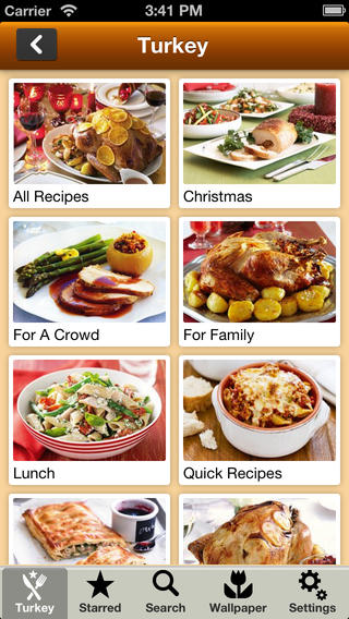 Thanksgiving Turkey Recipes thanksgiving recipes pdf