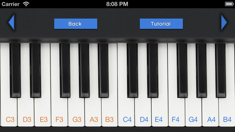 piano concert report essay