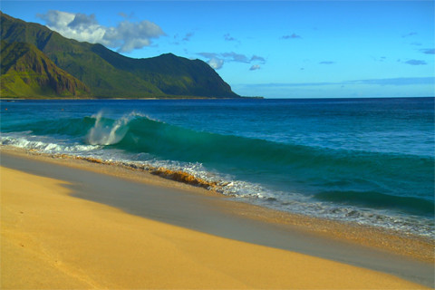 Hawaii Beaches Video