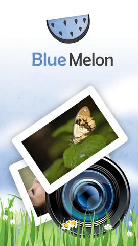 BlueMelon Photo Websites websites for francophiles