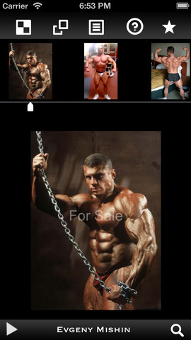 BodyBuilding Pro bodybuilding forums