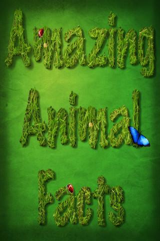 Amazing Animal Facts facts on animal welfare