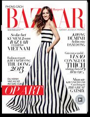 Harper`s Bazaar VN