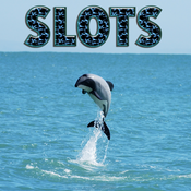 Hector`s Dolphin - FREE Casino Machine For Test Your Lucky, Win Bonus Coins In This Fabulous Machine