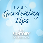 Easy Gardening Tips - Revealed by the breeder