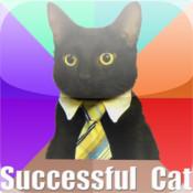 Successful Cat meme