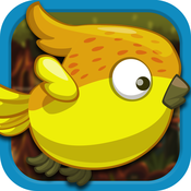 Paradise Birds - Endless Wings Flying Jungle Adventure Game - FREE