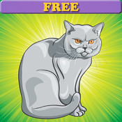 Coloring Book: Cats and Kittens ! FREE Coloring Pages for Toddlers free kittens in minnesota