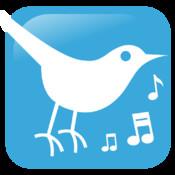 La musique cachée des chants d`oiseaux – Au pays des Alouettes
