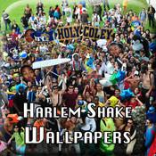 Harlem Shake Wallpapers
