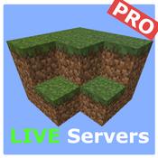 Pro Servers - for Minecraft servers using