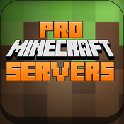 Servers Pro For Minecraft servers using