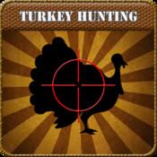 Turkey Hunt Calls animated turkey wallpaper