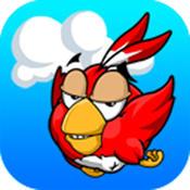 ChasingBird